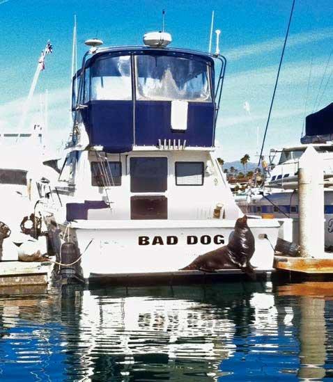 Boating On The West Coast - Seaworthy Magazine - BoatUS