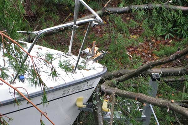 Photo of tree damaged Hunter 27 Edge boat