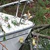 Thumbnail photo of boat hit by tree