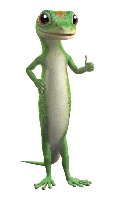 Geico Car And Home Insurance