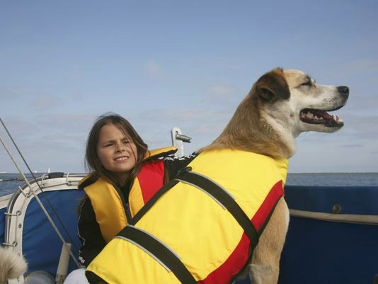 Photo of a dog and child on a boat