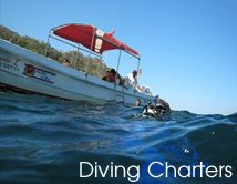 Diving Charters