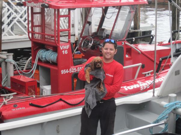 Dog rescued from intracoastal