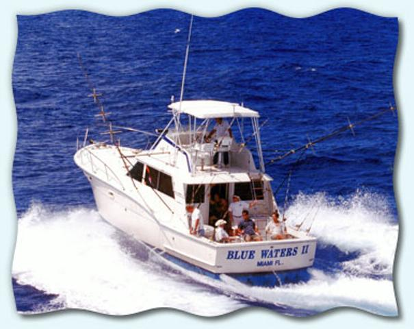 Ace Blue Water Fishing